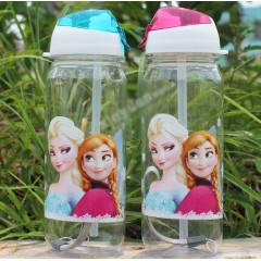 Frozen Elsa and Anna Water Tumbler